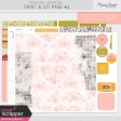 Travelers Notebook Print & Go Page Kit #4