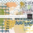 Where Flowers Bloom Paint Kit