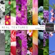 Real Textures Kit #6