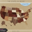 The States In Wood Kit