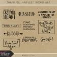Thankful Harvest Word Art Kit