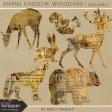 Animal Kingdom - Woodland Collages
