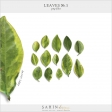 Leaves No.3