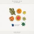 Flowers No.20