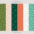Patterns No.21