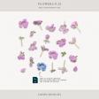 Flowers No.29