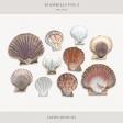 Sea Shells Vol.I