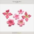 Flowers No.6