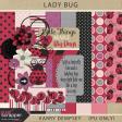 KMRD-202109DC-Lady Bug