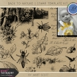 Back to Nature - Stamp Template Kit