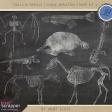 Chills & Thrills - Chalk Skeleton Stamp Kit 3