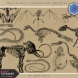 Chills & Thrills - Skeleton Stamp Template Kit 2