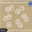 Toolbox Numbers - Circle Number Template Kit 2