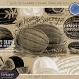 Slice of Summer - Stamp Template Kit 1