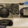 Slice of Summer - Stamp Template Kit 2