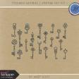 Toolbox Goodies - Vintage Key Kit 1