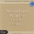Woodland Winter - Wooden Alphabet Kit