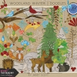 Woodland Winter - Doodle Kit