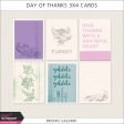 Day of Thanks 3x4 Cards Kit