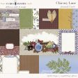 Chicory Lane Journal Cards