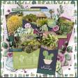 A Succulent Life