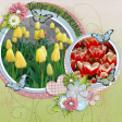 Tulips Say Spring