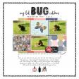 My Li'l Bug Catcher