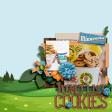 Bucket List Cookies