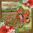 Wildseed Farms - Mother Nature's helper! (ads)