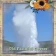 Old Faithful (ADB)