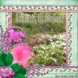 Azaleas in bloom!  (PStorm)