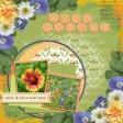 Wild Spring (ADB)