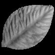 Craft Leaf Template