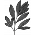 Pond Life Leafy Branch Template