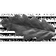 Outdoor Adventures - Element Template - Leaf 01