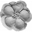 Spookalicious - Element Templates - Large Flower 01