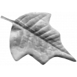 Leaf 004 Template