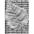 Leaf 005 Template