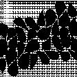 Paper 705 - Teardrop Overlay