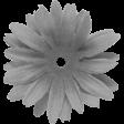 Cast A Spell, Fabric Flower