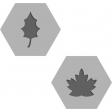 Cast A Spell, Hexagons