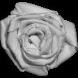 Fabric Flower Template 022