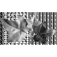 Leaf Template 008