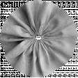 Fabric Flower Template 040