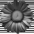 Flower Template 001