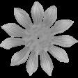 Flower Template 06