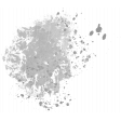 Paint Stamp Template 080