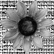 Silk Flower Template 009