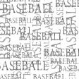 Baseball Words 001 Overlay