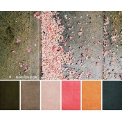 Palette #2 image